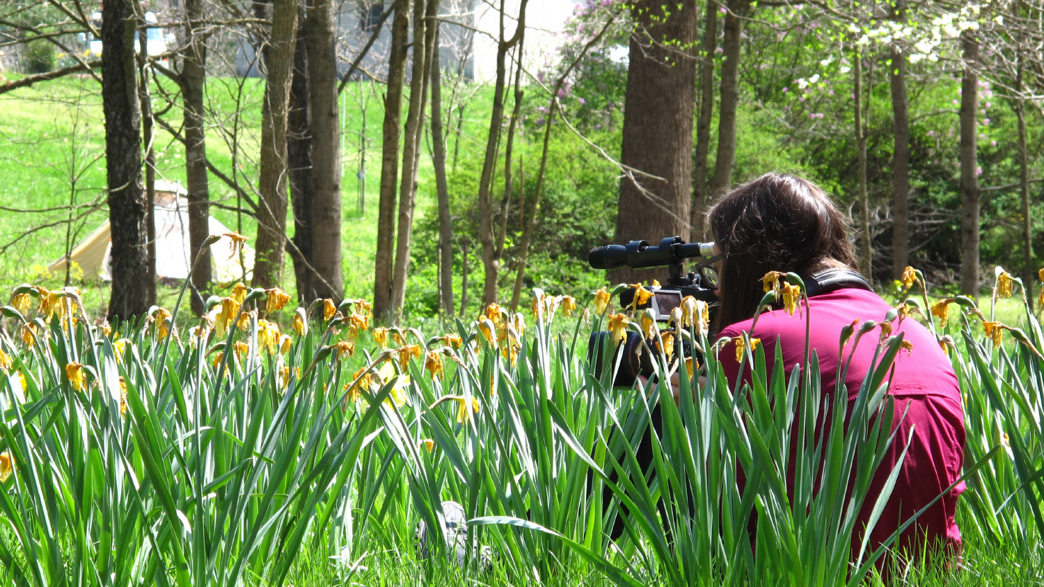 TFMA student films outdoors