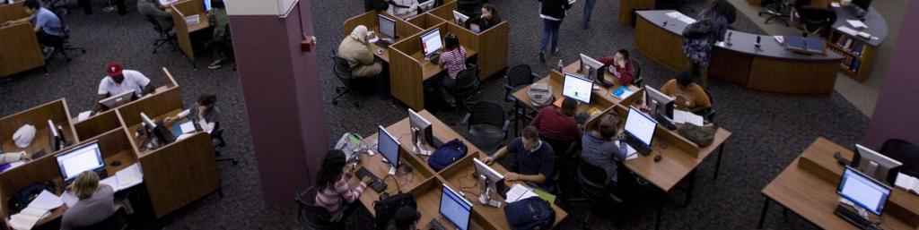 Students Studying in Paley Library