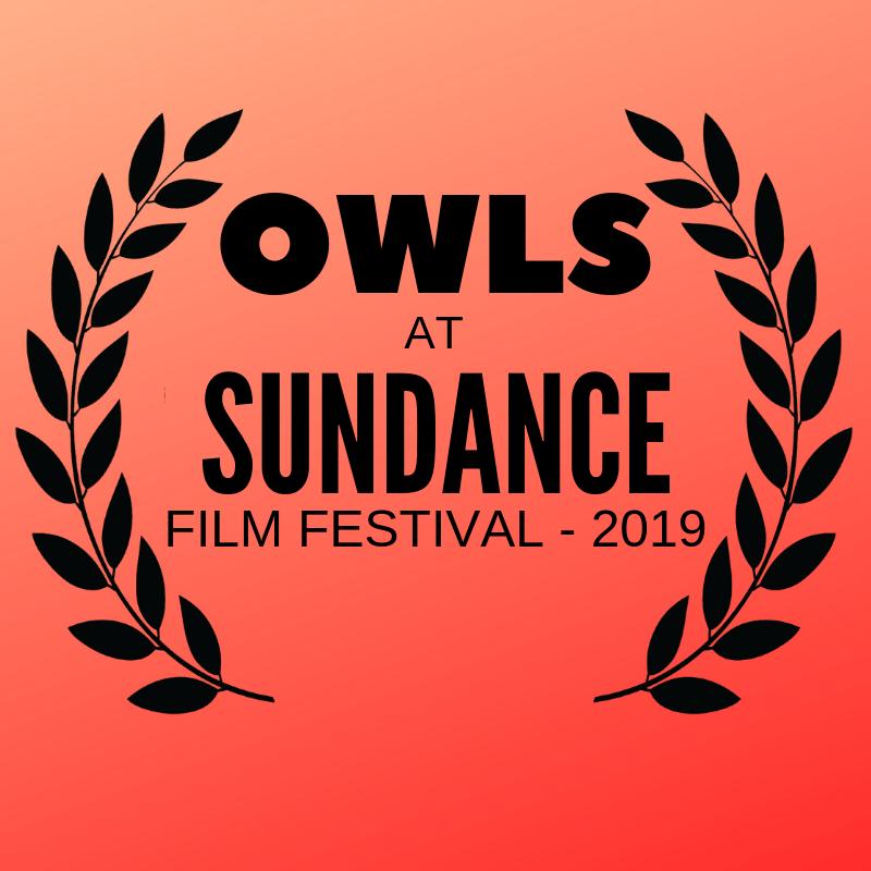 Owls at Sundance
