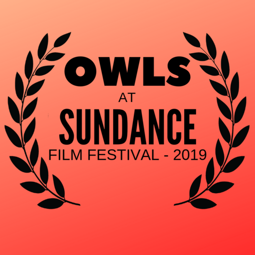 Owls at Sundance
